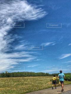 草原でジョギング!  🏃♂️の写真・画像素材[1292131]