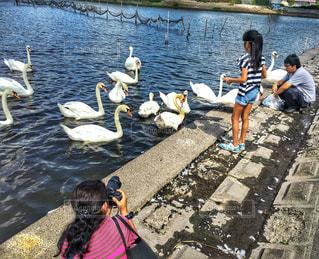 水辺の風景の写真・画像素材[1394030]