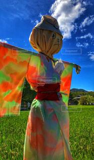 田んぼの案山子の写真・画像素材[1446079]