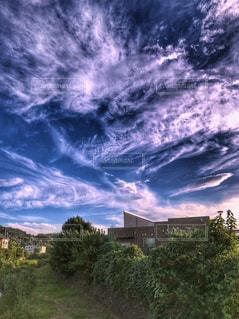 空,建物,木,緑,雲,青,草,秋空,変化,空の日