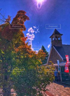 建物,太陽,青空,もみじ,日光,日差し,光,屋根,秋晴れ,道の駅,秋空,のぼり,空の日