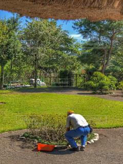 庭の写真・画像素材[1486861]