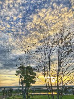 直前の夕日の写真・画像素材[1489532]