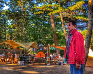 男性,アウトドア,キャンプ,テント,野外,ポジティブ,松林