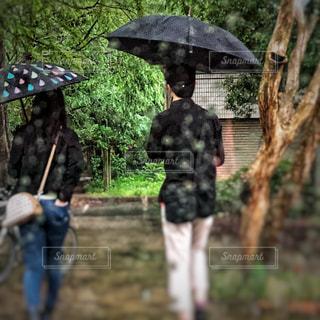 雨☔️の写真・画像素材[1583999]