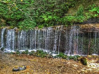 滝の写真・画像素材[1612130]
