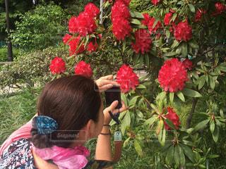 花の撮影🌸の写真・画像素材[1646803]