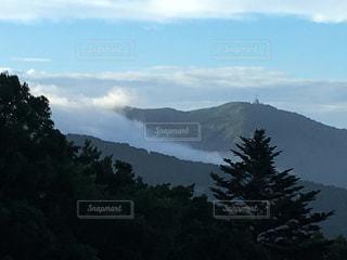 木,雲,霧,山,曇り空,雲海,茨城,もや,霊峰
