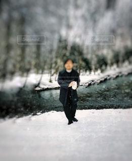 冬景色の写真・画像素材[1733614]