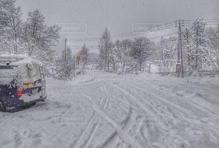 雪の写真・画像素材[1756928]