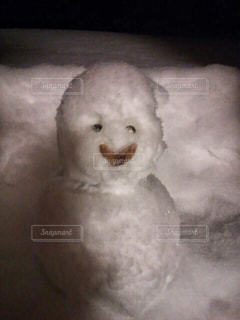 北海道の冬の写真・画像素材[1758998]