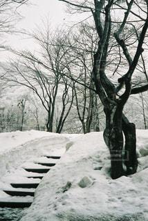 冬の旅の写真・画像素材[1762828]