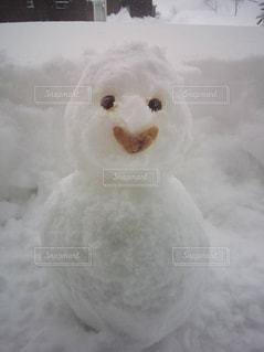 雪の写真・画像素材[1791771]