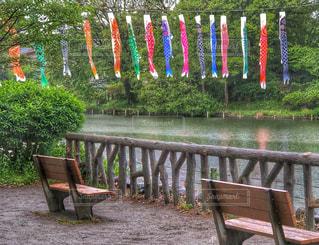 雨の公園の写真・画像素材[2107436]