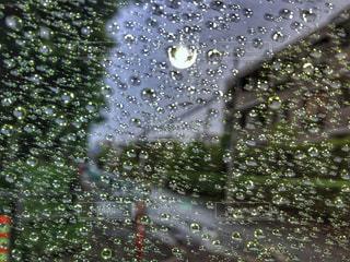 水滴の写真・画像素材[2107515]