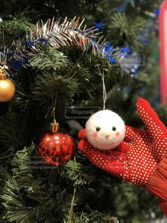 クリスマスツリーの写真・画像素材[2825829]