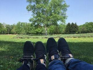 広い芝生の上で足を伸ばしている男女の写真・画像素材[135434]