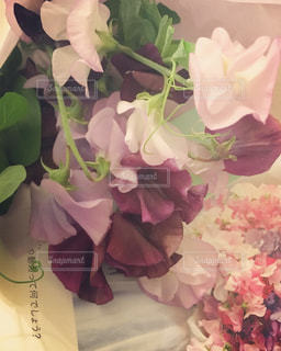 花のクローズアップの写真・画像素材[2142491]