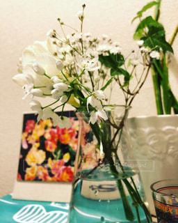 花の写真・画像素材[2143338]