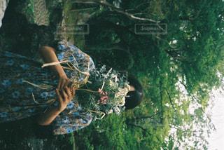 森の中を泳いでいる人の写真・画像素材[2379950]