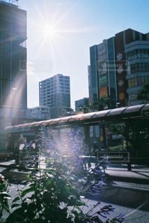 空,建物,太陽,光,都会,高層ビル,フィルム,フィルムカメラ,フィルム写真