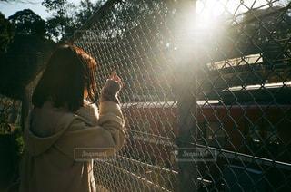 フェンスの前に立っている人の写真・画像素材[2873790]