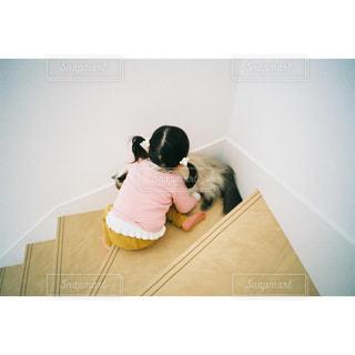 家族,2人,猫,動物,屋内,階段,ペット,人物,赤ちゃん,幼児,ツインテール,フィルム,フィルム写真,ネコ