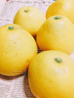 黄色,フルーツ,果物,美味しい,イエロー,文旦,旬,柑橘系,熊本県産