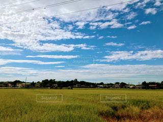 秋,田舎,田んぼ,日本,稲,稲刈り,秋の空,実りの秋,空と田んぼ
