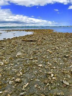 水の体の横にある岩のビーチの写真・画像素材[1385270]