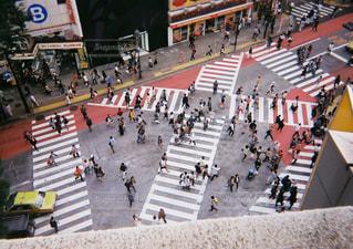 渋谷、スクランブル。の写真・画像素材[1236585]