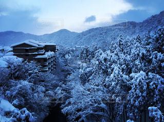 白,雪景色,石川,山中温泉,一面真っ白,旅館と雪