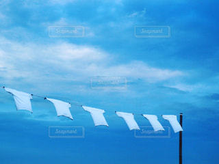 白いTシャツの写真・画像素材[2114160]