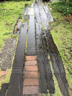 木,雨,庭,草,歩道,梅雨,ガーデン,枕木