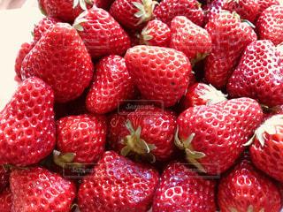 赤,いちご,苺,フルーツ,果実,山盛り,ストロベリー