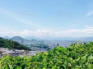 瀬戸内海が見える街の写真・画像素材[1158578]