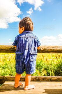 ベンチに立つ幼児の写真・画像素材[1134466]