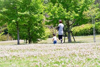 公園にての写真・画像素材[1159571]
