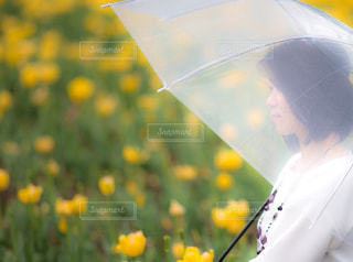 黄色い傘を持っている人の写真・画像素材[1371818]