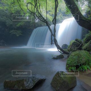 自然の写真・画像素材[2400256]