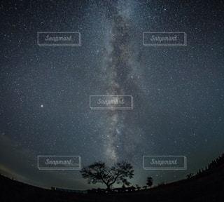 夜空の写真・画像素材[3377268]