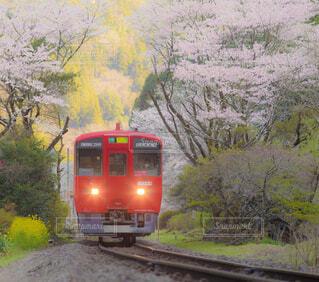 森の近くで列車の線路を下って移動する列車の写真・画像素材[4275278]