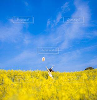 空に凧を飛ばす人々のグループの写真・画像素材[4297944]