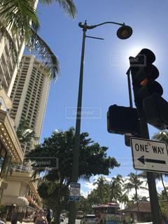 木からぶら下がって道路標識の写真・画像素材[1135966]