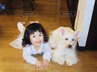 愛犬と同じポーズ - No.1158992