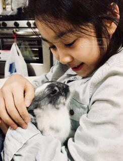 ウサギと女の子の写真・画像素材[1163451]