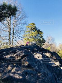 セントラルパークの崖を登る女の子の写真・画像素材[1198626]