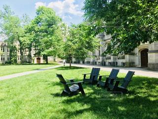 公園のベンチの上に座っての芝生の椅子のカップル - No.1213462