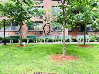 マンハッタンの芝生とベンチの写真・画像素材[1219141]