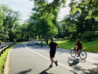 セントラルパークとジョギングと自転車の写真・画像素材[1254252]